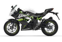 Kawasaki Ninja 125 2020 (13)