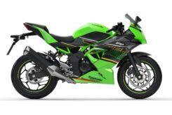 Kawasaki Ninja 125 2020 (3)