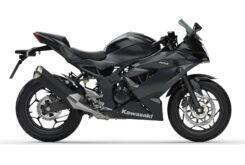 Kawasaki Ninja 125 2020 (5)