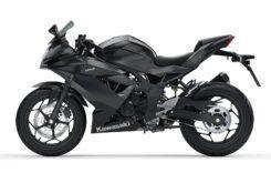 Kawasaki Ninja 125 2020 (6)