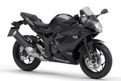 Kawasaki Ninja 125 2020 (7)