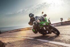 Kawasaki Versys 1000 SE 2020 (27)