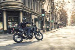 Kawasaki Versys X 300 2020 (12)