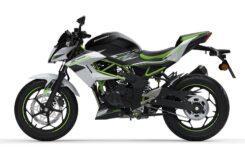 Kawasaki Z125 2020 (1)