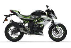 Kawasaki Z125 2020 (3)