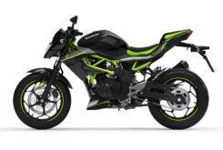 Kawasaki Z125 2020 (5)