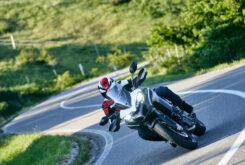 Ducati Multistrada 950 S 2021 (50)