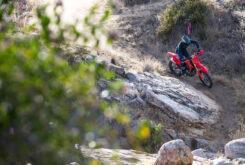 Honda CRF450RX 2021 (15)