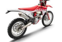 GasGas EC 250F 2021 enduro (15)