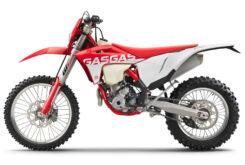GasGas EC 350F 2021 enduro (10)
