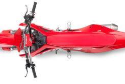 GasGas MC 450F 2021 motocross (10)