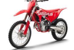 GasGas MC 450F 2021 motocross (14)