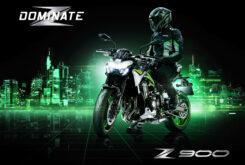 Kawasaki Z900 2021 (27)