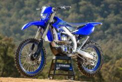 Yamaha WR250F 2021 (18)