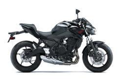 Kawasaki Z650 2021 (10)