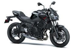 Kawasaki Z650 2021 (9)