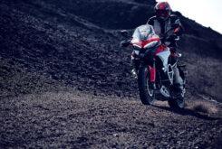 Ducati Multistrada V4 S 2021 Accion39