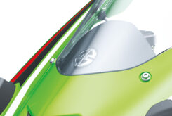 Kawasaki ZX10 R 202112