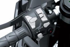 Kawasaki ZX10 R 202116