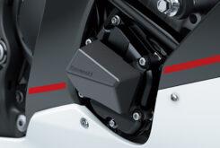 Kawasaki ZX10 R 202121
