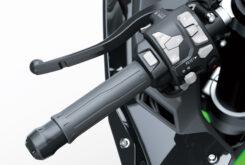 Kawasaki ZX10 R 202123