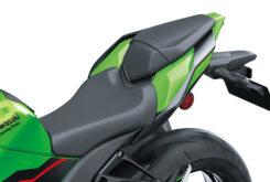 Kawasaki ZX10 R 202127