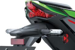 Kawasaki ZX10 R 202128