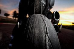Ducati Monster Plus 202154
