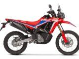 Honda CRF300 Rally 2021 (7)