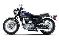 Kawasaki W800 2021 (8)