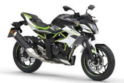 Kawasaki Z125 2021 (1)