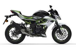 Kawasaki Z125 2021 (2)