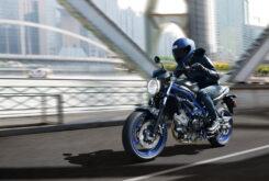 Suzuki SV650 2021 (1)