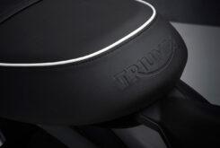 Triumph Bonneville T100 2021 detalles (6)