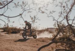 Ducati Scrambler Desert Sled Fasthouse 2021 (24)