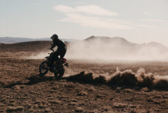 Ducati Scrambler Desert Sled Fasthouse 2021 (88)