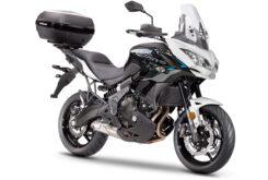 Kawasaki Versys 650 Mobility 2021 (3)