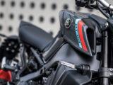 Yamaha MT 09 2021 (7)