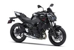 Kawasaki Z650 Sport 2021 (2)