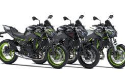 Kawasaki Z650 Sport 2021