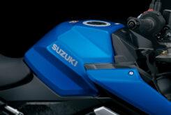Suzuki GSX S1000 2021 (123)