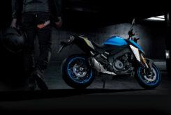 Suzuki GSX S1000 2021 (172)