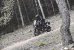 Harley Davidson Pan America 1250 Prueba 4264