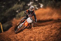 KTM 250 SX F 2022 motocross (7)