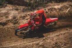 GasGas MC 250 2022 motocross (3)
