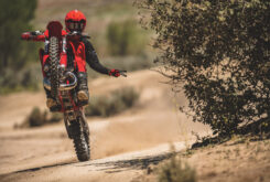 GasGas MC 250 2022 motocross (7)