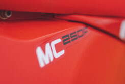 GasGas MC 250F 2022 motocross (28)