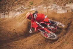 GasGas MC 450F 2022 motocross (19)