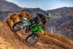 Kawasaki KX450 2022 motocross (3)