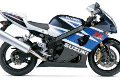 Suzuki GSX R1000 2003 perfil